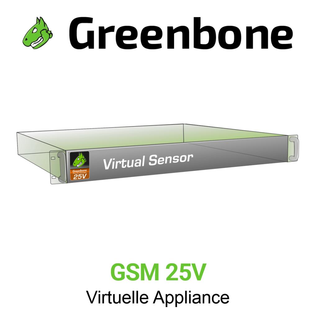Greenbone GSM 25V Virtuelle Appliance